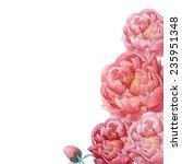 watercolor peonie bouquet frame.... | Shutterstock .eps vector #235951348