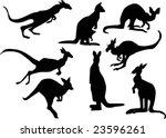 illustration with kangaroo...   Shutterstock .eps vector #23596261