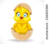 Fluffy Little Cartoon Chick...