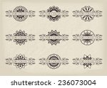 calligraphic design elements.... | Shutterstock .eps vector #236073004