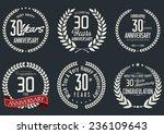 anniversary laurel wreath...   Shutterstock .eps vector #236109643
