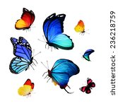 flock of butterflies | Shutterstock . vector #236218759