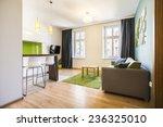 modern small studio interior... | Shutterstock . vector #236325010