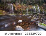 Mossbrae Fall  California