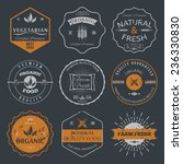 set of vintage style elements... | Shutterstock .eps vector #236330830