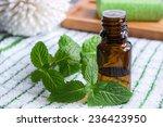 essential mint oil | Shutterstock . vector #236423950