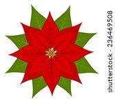 Poinsettia Flower  Symbol Of...