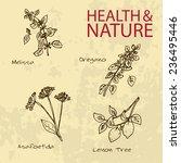 handdrawn illustration   health ...   Shutterstock .eps vector #236495446
