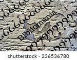 Small photo of Bibliomania
