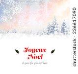 joyeux noel against snowy... | Shutterstock . vector #236617090