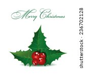 holly berry christmas symbol.... | Shutterstock .eps vector #236702128