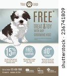 flyer template for a pet store...   Shutterstock .eps vector #236741809
