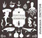 sea life  marine animals.... | Shutterstock .eps vector #236757148
