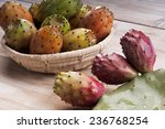 tropical opuntia prickly pear... | Shutterstock . vector #236768254