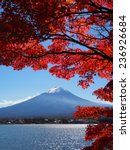 autumn red maple mt. fuji at... | Shutterstock . vector #236926684
