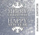 merry christmas and new year... | Shutterstock . vector #236929738