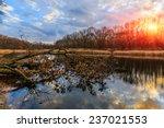 Autumn Scene On Old Lake In...