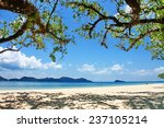 trees and beach at koh chang... | Shutterstock . vector #237105214