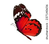 Stock photo beautiful red butterfly flying isolated on white background 237140656