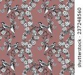 birds on tree spring twigs... | Shutterstock . vector #237248560
