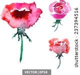 three vector watercolor flowers ... | Shutterstock .eps vector #237394516
