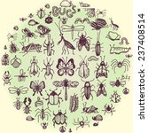 set of hand drawn doodle insects | Shutterstock .eps vector #237408514