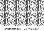 black and white optical... | Shutterstock .eps vector #237419314