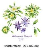 watercolor flowers. vector...