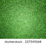 lawn | Shutterstock . vector #237545068