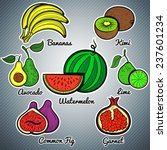 exotic fruit set colorful... | Shutterstock .eps vector #237601234