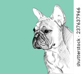 french bulldog portrait  hand...   Shutterstock .eps vector #237637966