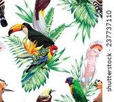 Tropical Animals Birds Parrot...