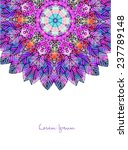 ornament beautiful  card with... | Shutterstock .eps vector #237789148