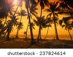 Tropical Paradise  Sunset At...