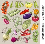 big collection of hand drawn...   Shutterstock .eps vector #237866554