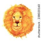 lion head watercolor | Shutterstock . vector #238020160