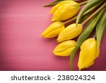 Yellow Tulips On A Pink Surfac...