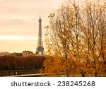 Eiffel Tower And Golden...