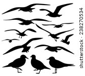 set of sea gull silhouette ... | Shutterstock .eps vector #238270534