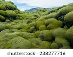 Iceland Lava Field Covered Wit...