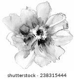 Luxurious White Peony Flower...