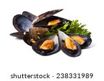 Mussels Isolated On White...