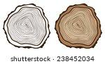 Cross Section Of Tree Stump....