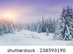trees in the fog | Shutterstock . vector #238593190