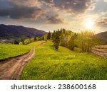 collage landscape with fence near the path through meadow up the hillside to forest  on the mountain in sunset light - stock photo