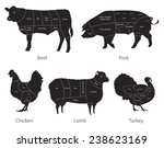 vector isolated farm animals... | Shutterstock .eps vector #238623169