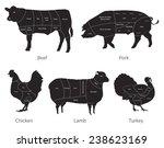 vector isolated farm animals... | Shutterstock .eps vector #238623169