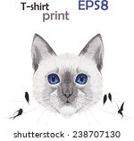 beautiful drawing of a cat with ... | Shutterstock .eps vector #238707130