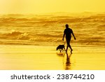 Stock photo person walking the dog on the beach at sunset 238744210