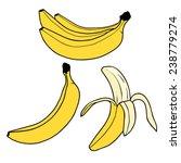 banana fruit illustration vector | Shutterstock .eps vector #238779274